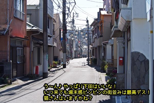 ニャポ旅17 伊豆下田