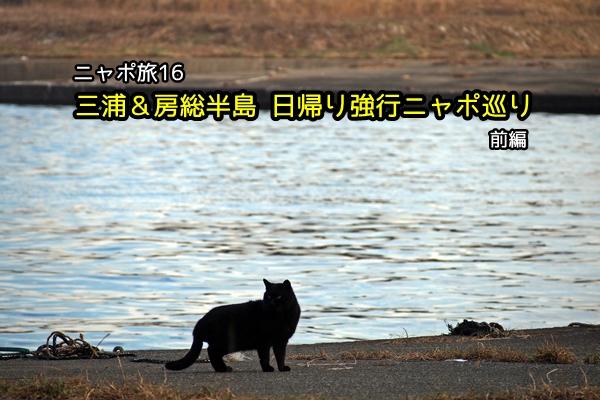 三浦&房総半島 日帰り強行ニャポ巡り 前編