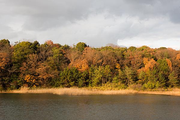 竜巻池夕景
