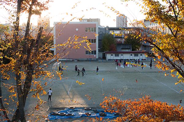 小学校校庭