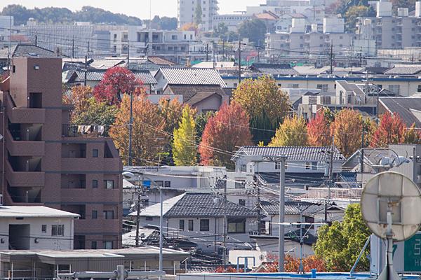 街中の紅葉