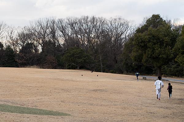芝生広場をランニングする一家