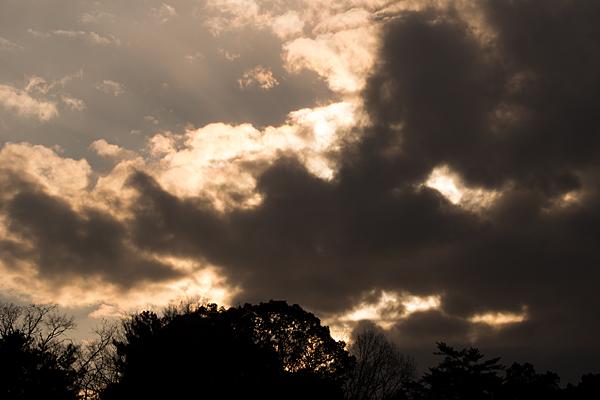 黄金色の空と雲