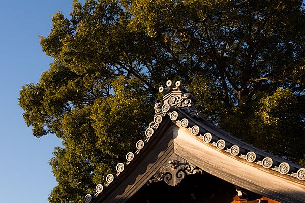 屋根と鬼瓦