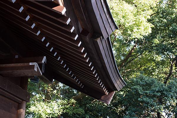 拝殿の屋根