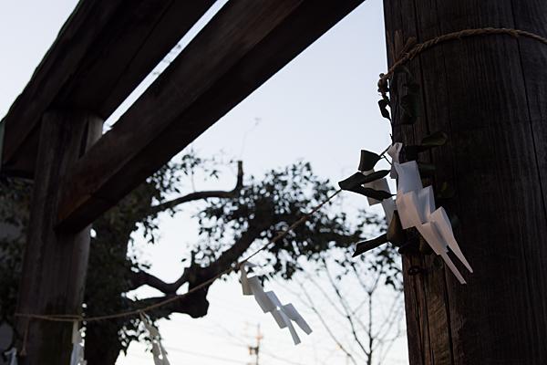 鳥居と紙垂