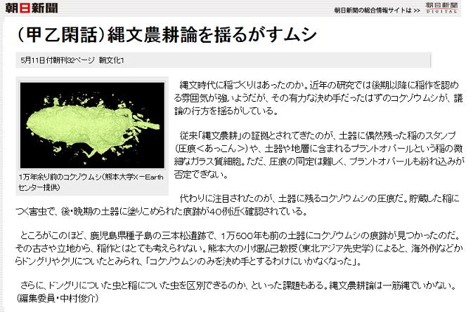 朝日新聞 コクゾウムシ 種子島
