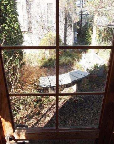 my-garden 081
