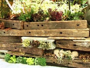 my-garden 169