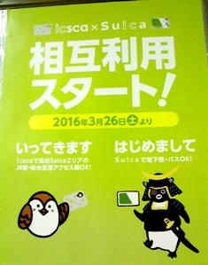 NEC_0051.jpg