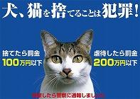 猫虐待防止