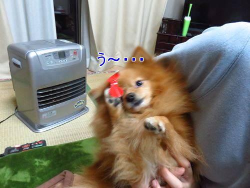 s-IMG_4130.jpg