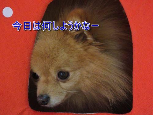 s-IMG_5448.jpg