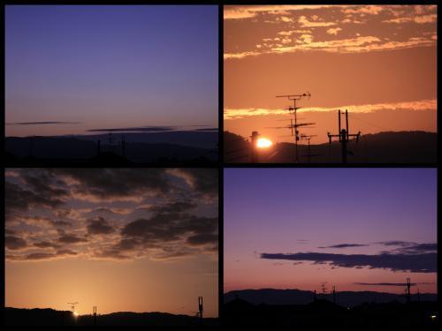Collage_Fotor1020asa_convert_20181020164012.jpg