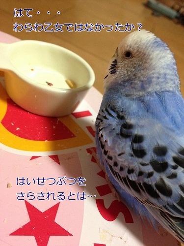s-IMG_6388.jpg