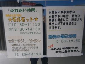 岡崎東公園動物園ふれあい時間詳細