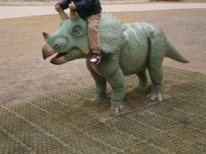 岡崎東公園動物園トリケラ