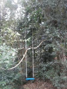 銅鐸公園12