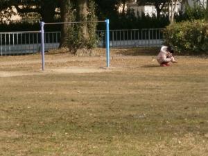 芳川公園17