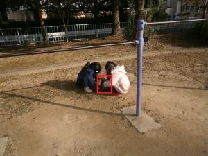 芳川公園19