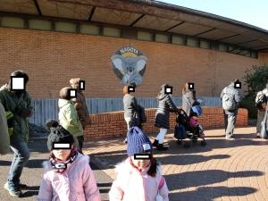 東山動物園コアラ4