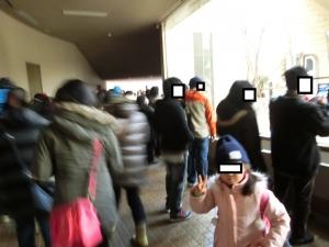 東山動物園コアラ6