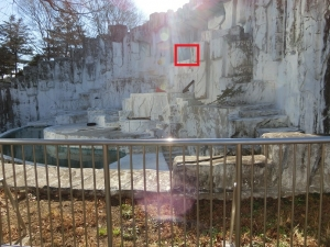 東山動物園コアラ13