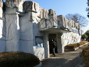 東山動物園コアラ15