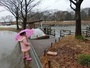 木曽川水園6
