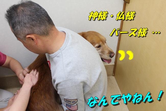 201601282232543ef.jpg