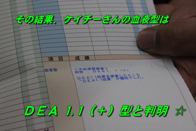 20160308120124c2e.jpg