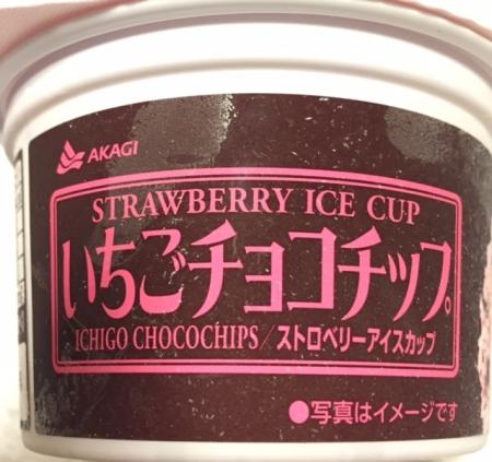 ichicho1.jpg