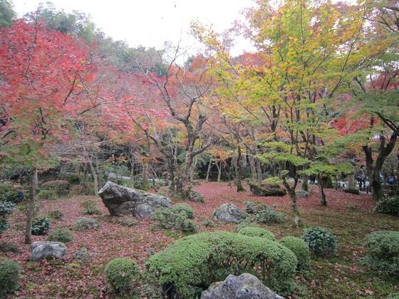 圓光寺庭園