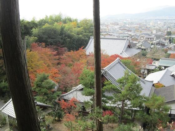 圓光寺 裏山からの眺望