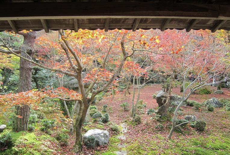 圓光寺庭園2