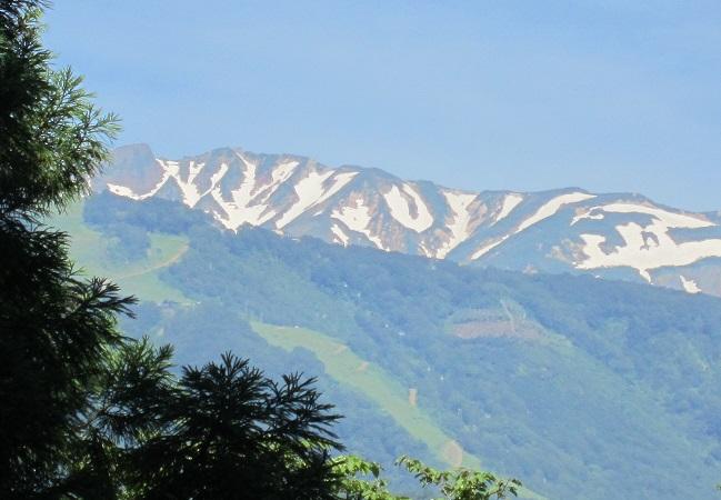 神明社からの白馬連峰