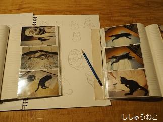写真とスケッチブック
