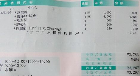 1月5日診療結果