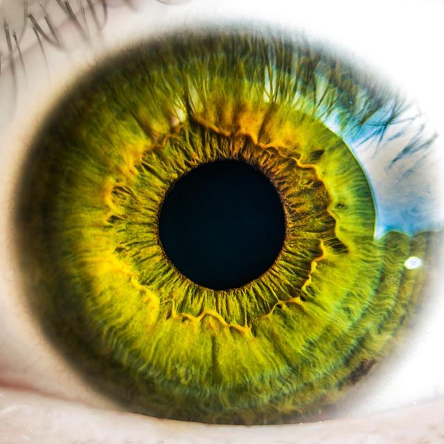 世界一の視力の持ち主は誰?
