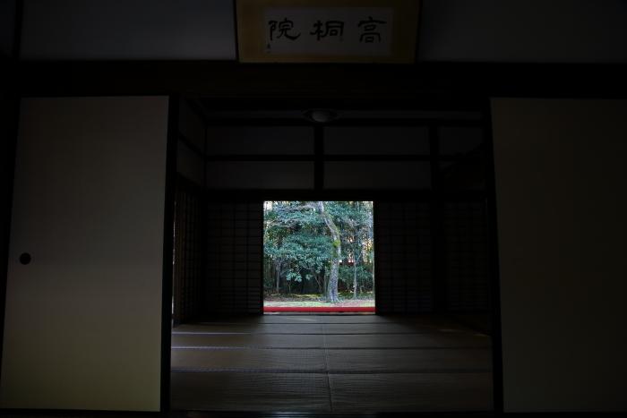 DPP_33566.jpg