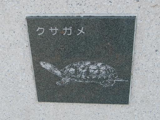20151227・狭山湖散歩2-03・中