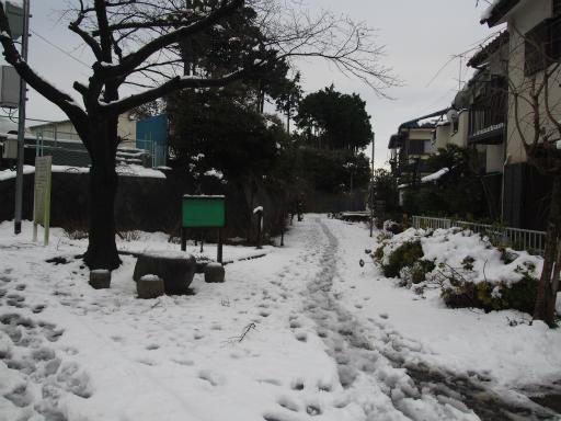 20160118・雪10