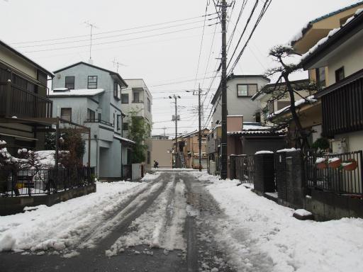 20160118・雪08