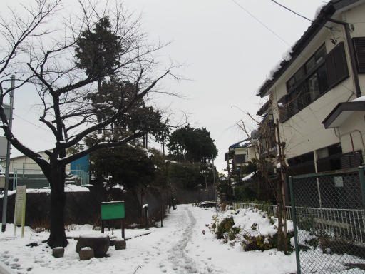 20160118・雪09