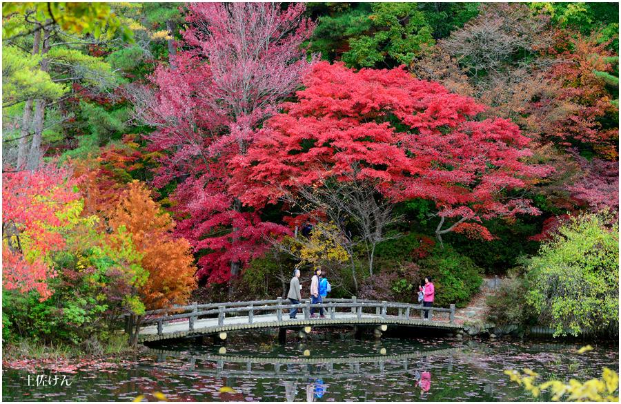 神戸森林植物園3
