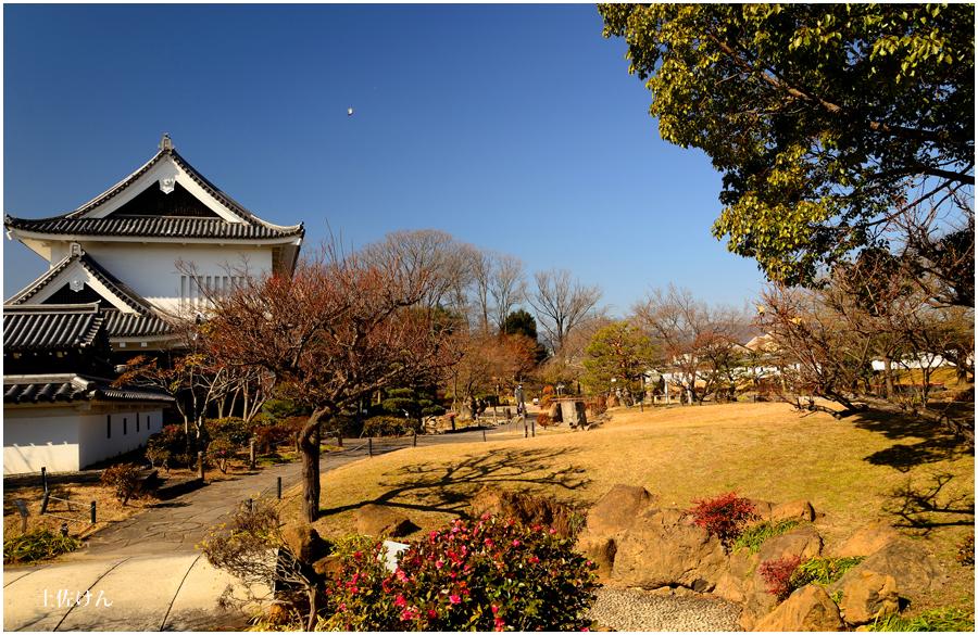 勝竜寺城公園3
