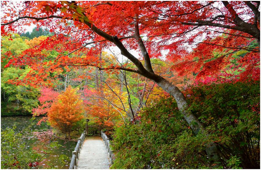神戸森林植物園・助手5