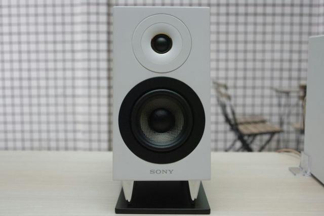Sony_CAS-1_02.jpg