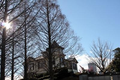 真冬の外交官の家