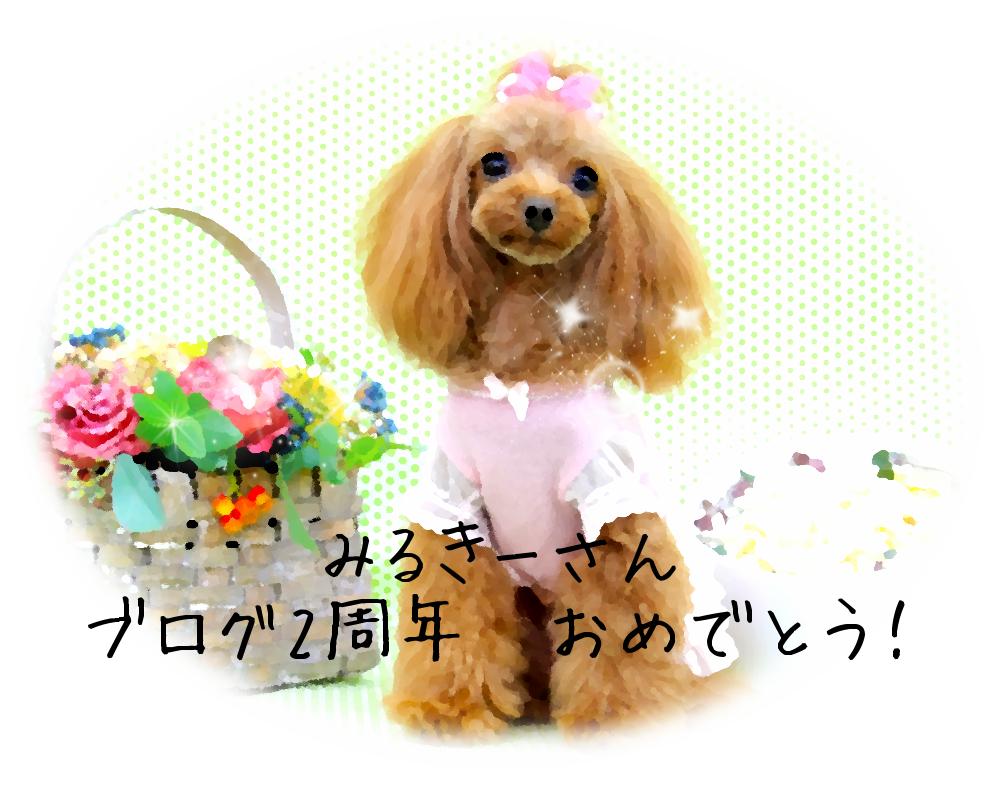 みるきーさん ブログ 2nd Anniversary